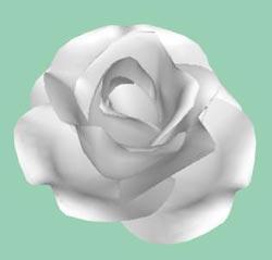 Rosepetal3