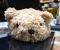 D1300_teddy7