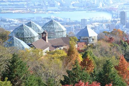 Kobe_herbgarden1