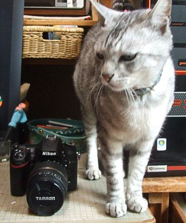 Camera008